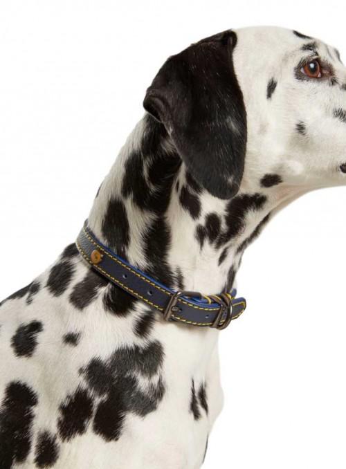 Læder hundehalsbånd Navy fra Joules