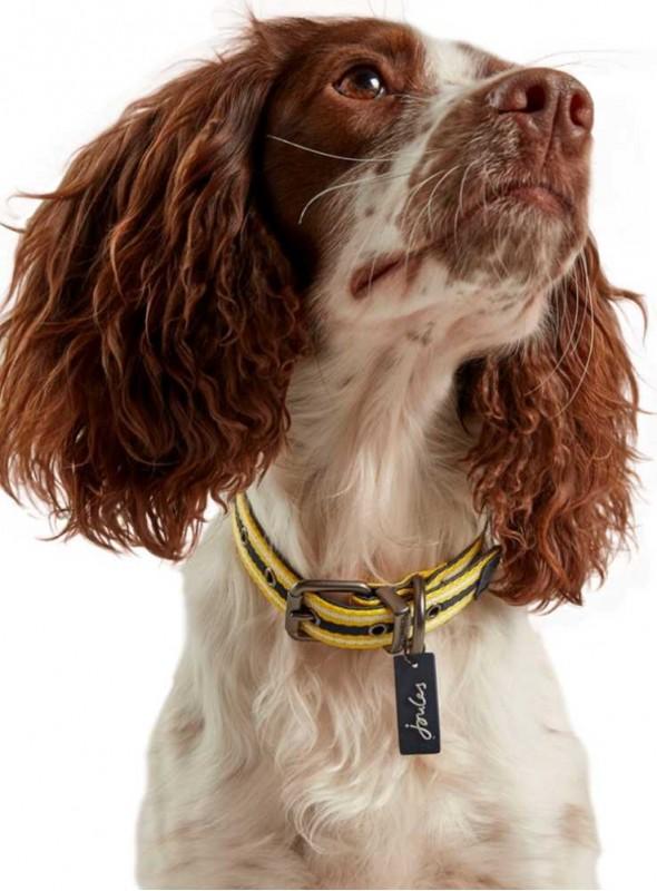 Halsbånd læder-nylon gul-blå fra Joules