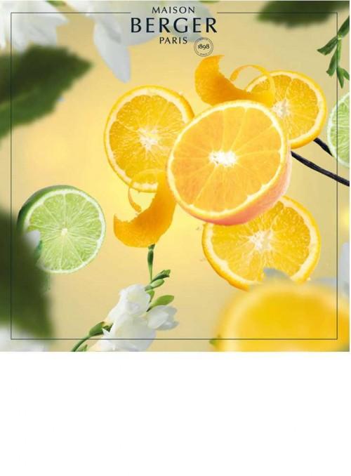 500 ml. Refill Orange Extreme luftrensende olie til Maison Berger luftrenser lampe