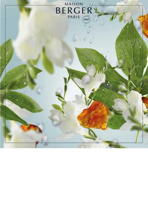 500 ml. Sommer Regn luftrensende olie til Maison Berger luftrenser lampe