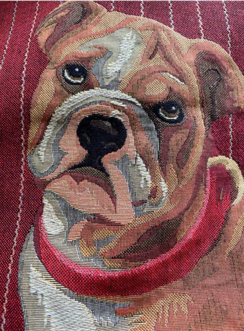 Pyntepude jacquardvævet med English Bulldog