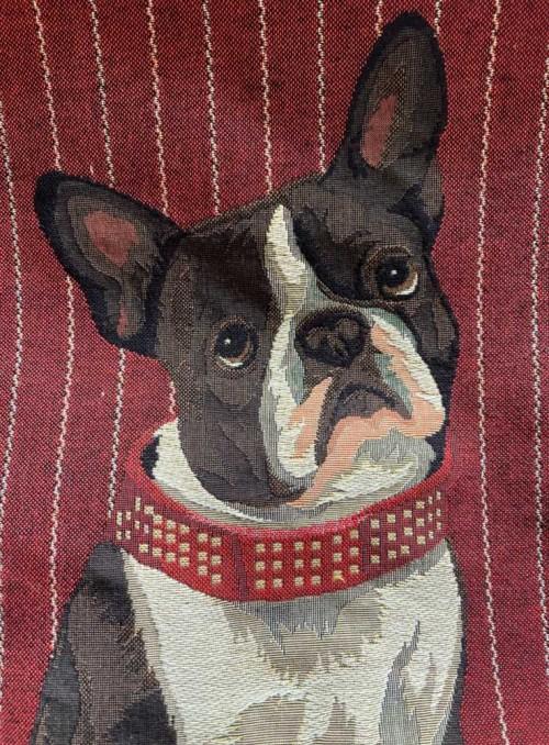 Pyntepude jacquardvævet med French Bulldog